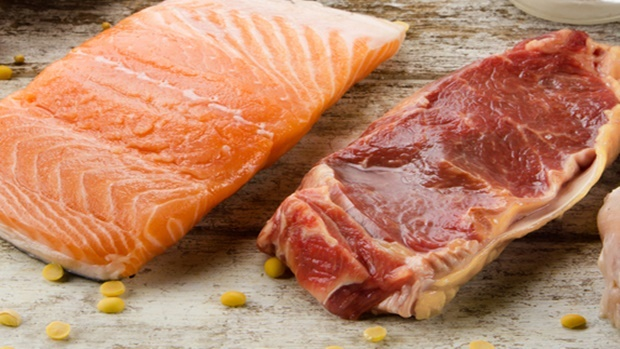 salmon and red meat