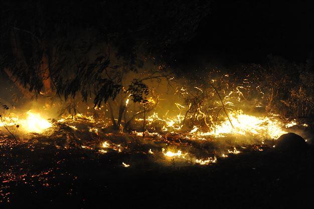 Knysna Fire Map.Gallery Aerial Pics Of Devastating Cape Fires News24
