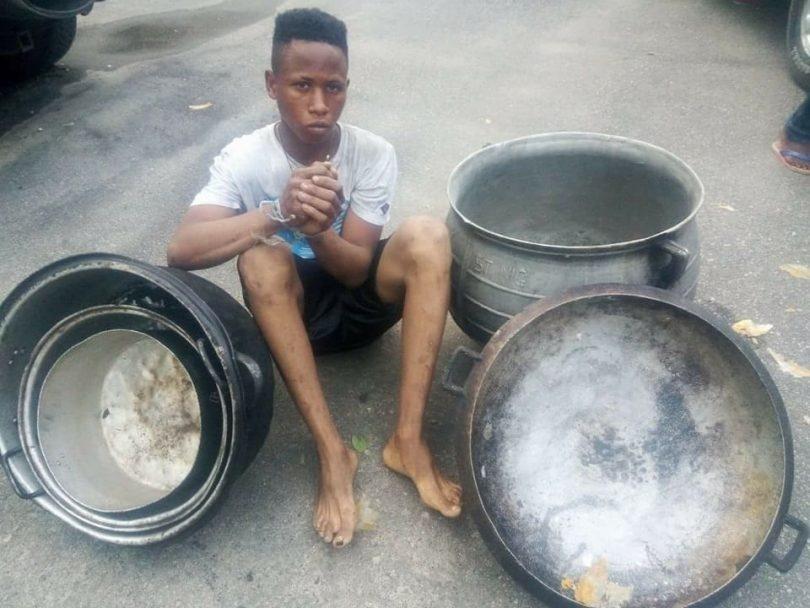 pot thief