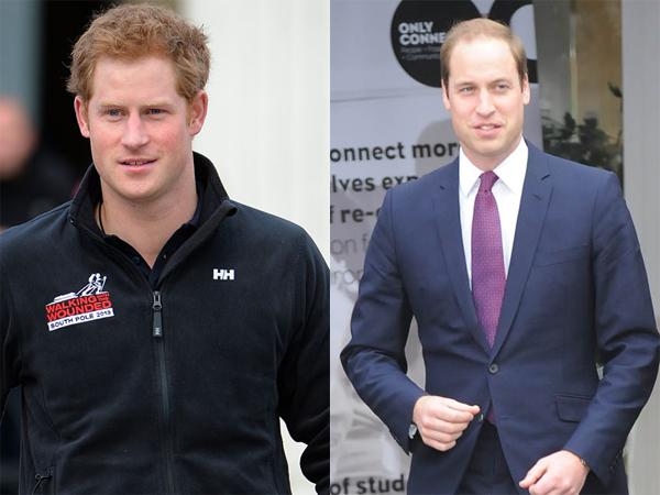 prinse Harry en William