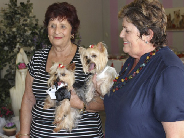 Martie en Annetjie is huisvriendinne en tydens hul kuiertjies het hul twee honde ook saam gekuier.