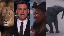 Watch the top trending videos of the week!