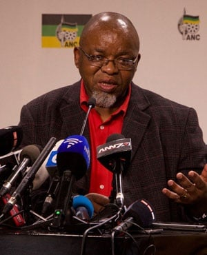 ANC secretary general Gwede Mantashe (Lerato Sejake, News24)