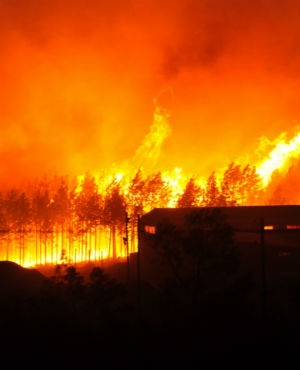 Raging fires at the Longmore Forest on June 07, 2017 in Knysna, South Africa.  (Gallo Images / Die Burger / Werner Hills)
