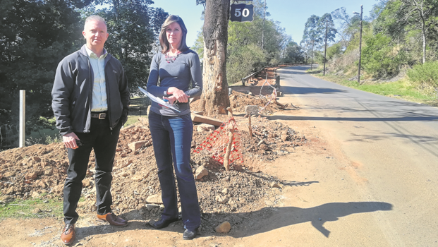 Rob Anderson (left) of Red Alert security and Sally Martins from the Shinglewood Estate on Link Road in Wembley. They are demanding answers from the municipality about the run-down condition of the road.