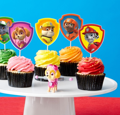 Paw Patrol theme Birthday party
