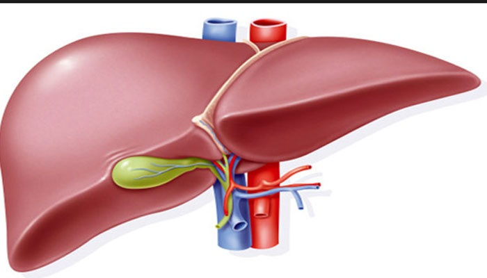 hepatitis liver disease.