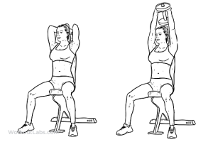 seated_tricep_press1