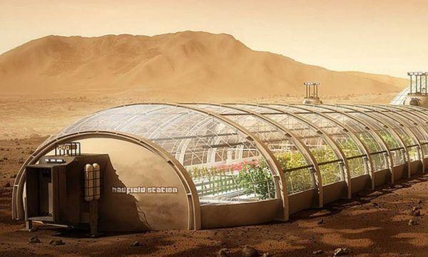 A greenhouse module in Mars