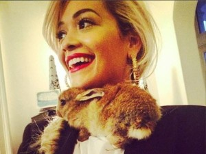 He is rabbit in high places! Cecil getting up close and personal with Rita Ora. PHOTO: Instagram