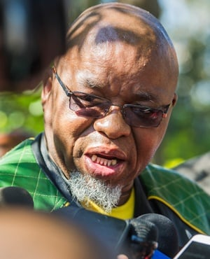 ANC secretary general Gwede Mantashe. (Deon Raath, Gallo Images, City Press, file)