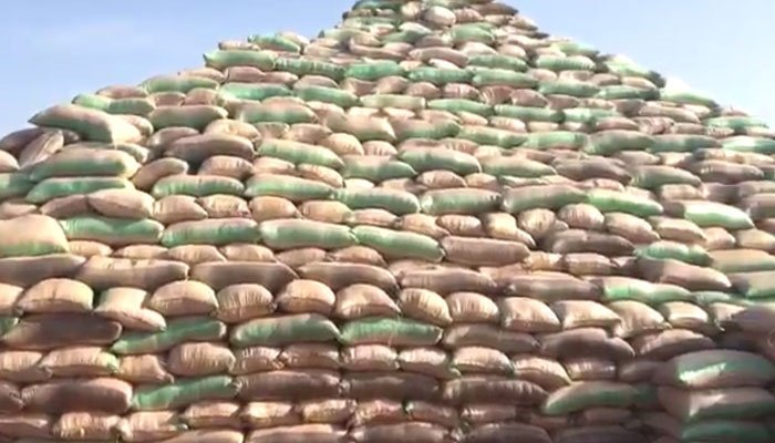 rice pyramid in kebbi state