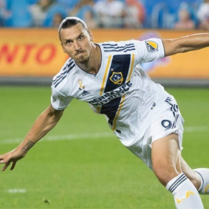 Zlatan Ibrahimovic Book English