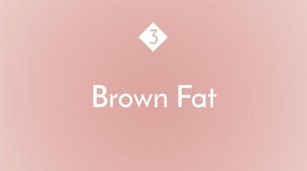 fat, women's health