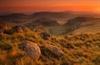 <strong>Sunrise in Golden Gate Highlands National Park by Johan Visser.</strong>