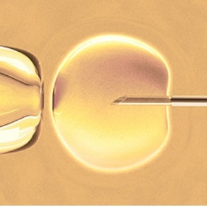 Fertility treatments are generally considered very safe.