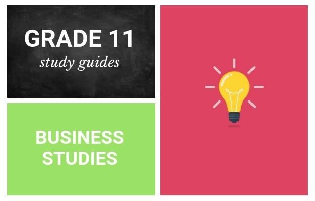 Grade 11 study guides: Business Studies | Parent24