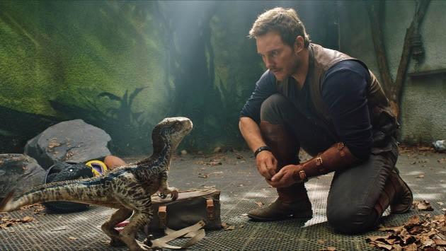 Chris Pratt in 'n toneel uit die jongste fliek in die gewilde Jurassic Park-reeks.