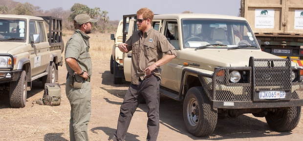 Prince Harry works in Malawi with African Parks as part of an initiative involving moving 500 elephants over 350 kilometers across Malawi. (Photo: Splash)