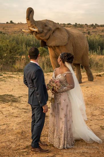 Chris en Eloise op hul troudag. FOTO: Gideon van Zyl