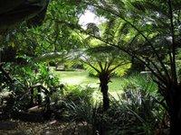 My rustige pryswenner tuin