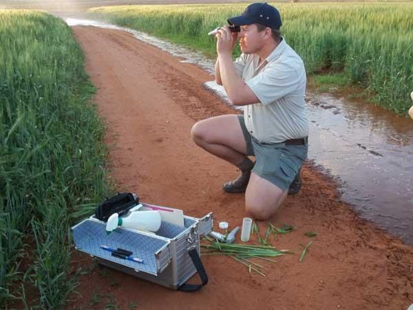 Die landboukundige met die refraktometer is mnr. Rupert Vermaas, Triomf se landboukundige in Noordwes. Foto verskaf