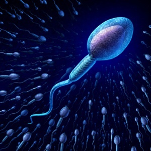 Find out what's in your sperm and what makes it healthy.
