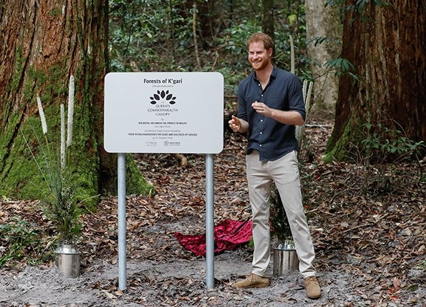 Prince Harry, Duke of Sussex unveils plaque scribe