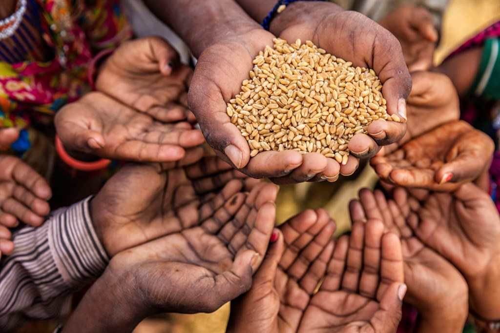 News24.com | Over 9 million facing food shortages in African Sahel: officials