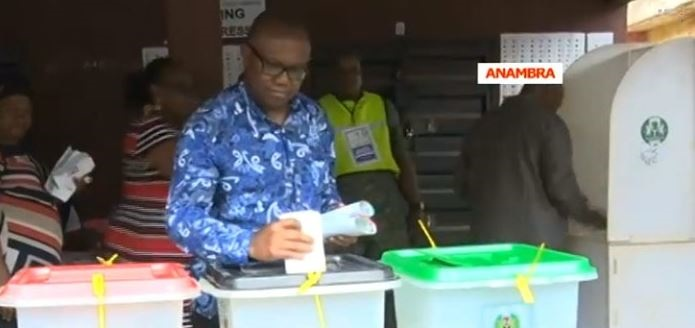 PDPs Vice Presidential Candidate, Peter Obi