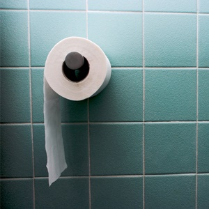 Toilet roll hanging in a bathroom