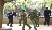 WATCH: 'Angry' bees attack protesters, police outside Kenya Supreme Court