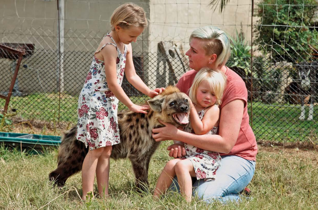Charlene van Wyk, daughter of game farm owner Nico   Roets, and her  kids Lienkie (left) and Hylene play with pet hyena Delta (Photos: Lubabalo Lesolle)