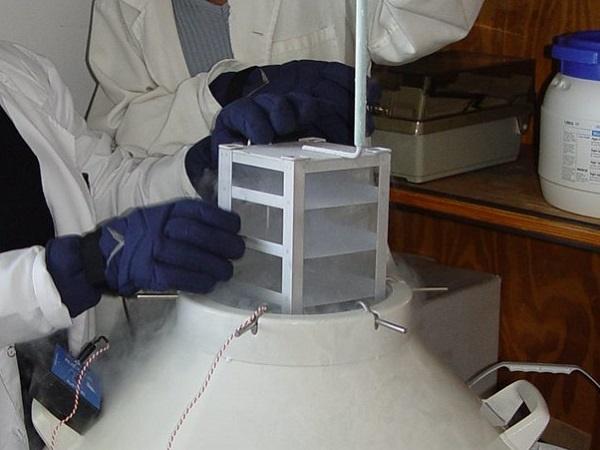 laboratorium, navorsing,