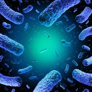 Listeriosis is one of the serious food-borne illnesses you can contract from bacteria.
