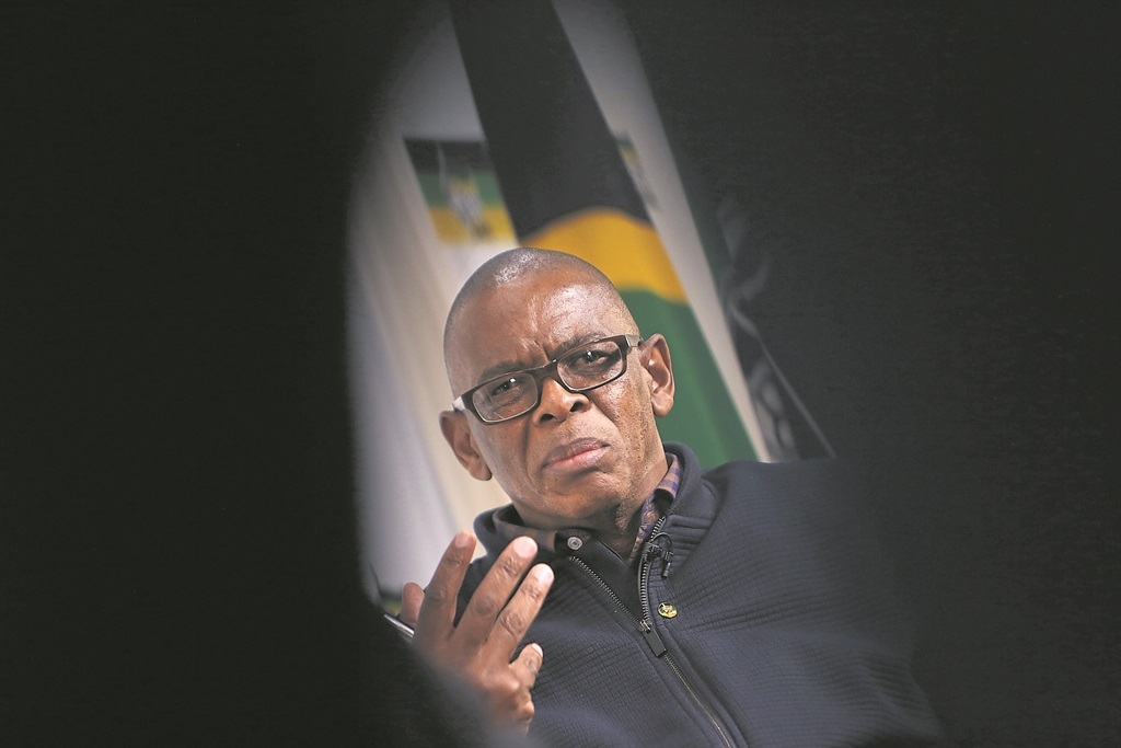 ANC secretary-general Ace Magashule. Photo: Gallo Images/Sunday Times/Alon Skuy