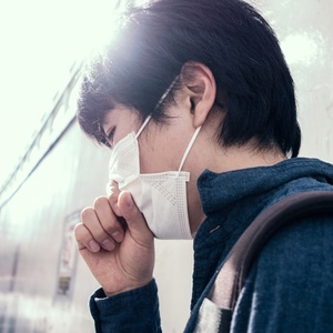 How likely is it that a big flu epidemic will strike again?