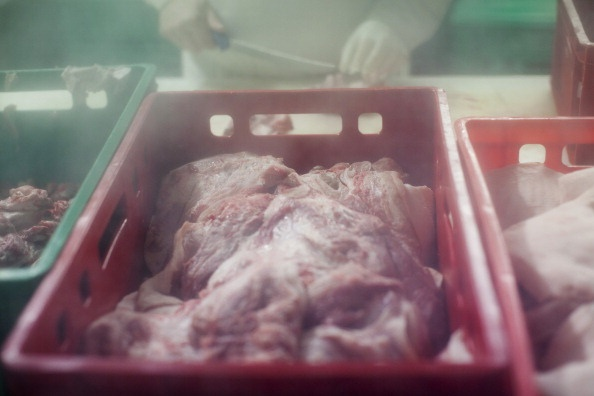 Horse meat imports into SA have suddenly jumped – and we don't know