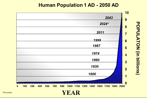 exponential human population