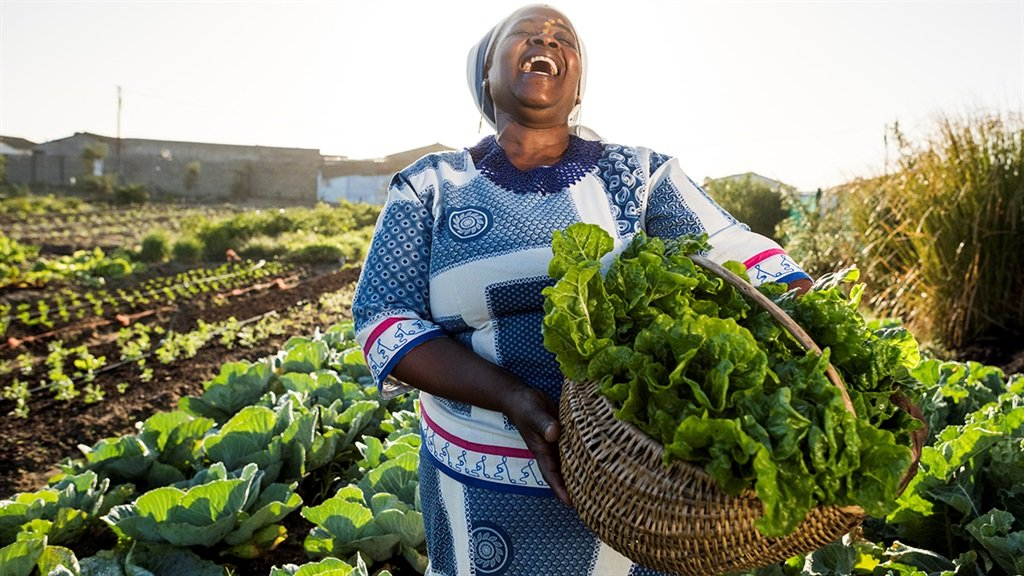 South Africa small-scale farmer agriculture food s