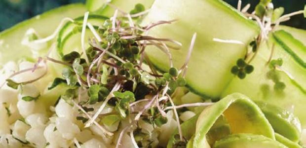 Samp salad bowls
