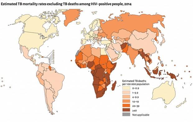 tb deaths hiv global