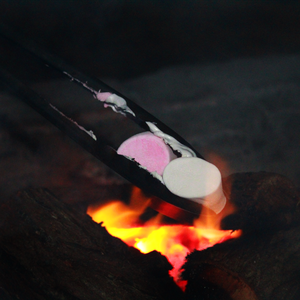Marshmallows roasting on a dying braai flame