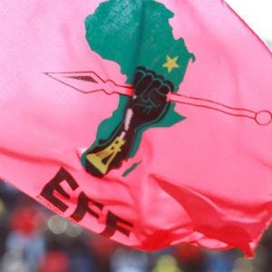 EFF flag. (AFP)