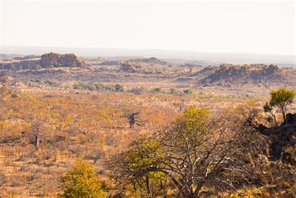 Mapungubwe National Park, landscape, South Africa