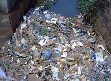 Plastics in oceans more than fish