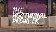 WATCH | Profile of a killer: Who is murdering Tshwane's homeless?
