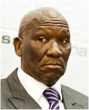 Bheki Cele (Gallo images/ Getty images, file)