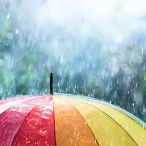 rain for drought stricken western cape news24