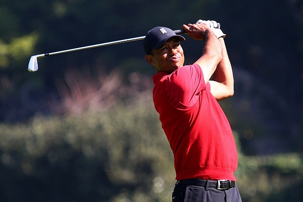 PACIFIC PALISADES, CALIFORNIA - FEBRUARY 16: Tiger